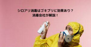 シロアリ消毒はゴキブリに効果あり? 消毒会社が解説!